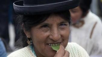 Masticando coca en una plaza, así protestan bolivianos a Evo Morales