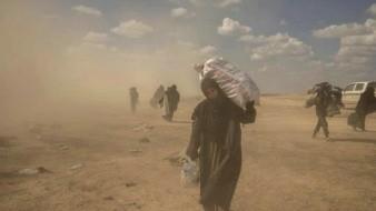Examinan en Siria el último reducto del Estado Islámico