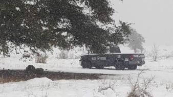Hallan cuerpo de mujer entre la nieve en Nogales