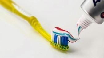 Tu cepillo dental podría tener más de 3.000 bacterias