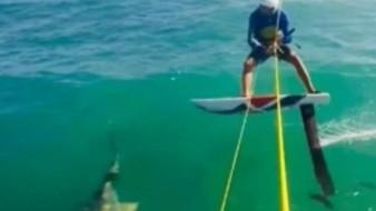 VIDEO: Sufre atleta accidente con tiburón en preparación para Panamericanos
