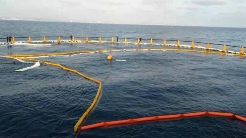 Trabajan en reducir derrame en el mar