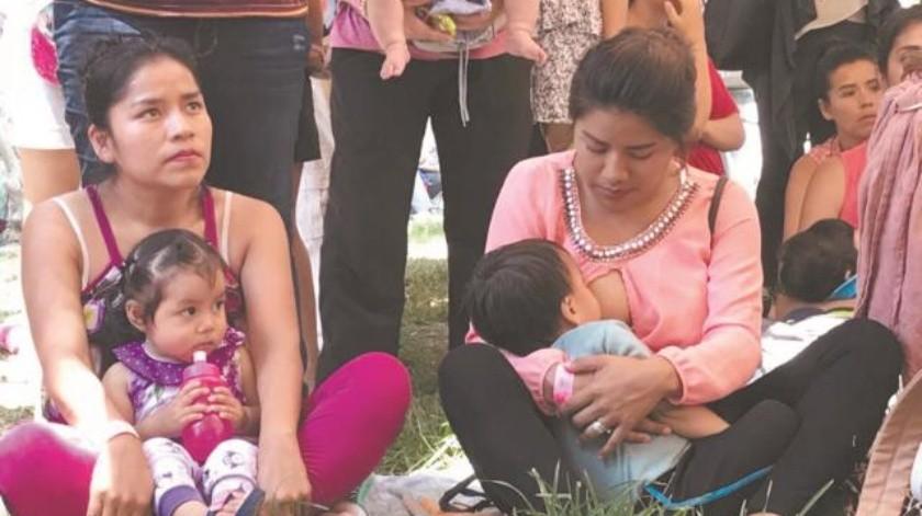 Buscan concientizar  sobre importancia  de lactancia materna