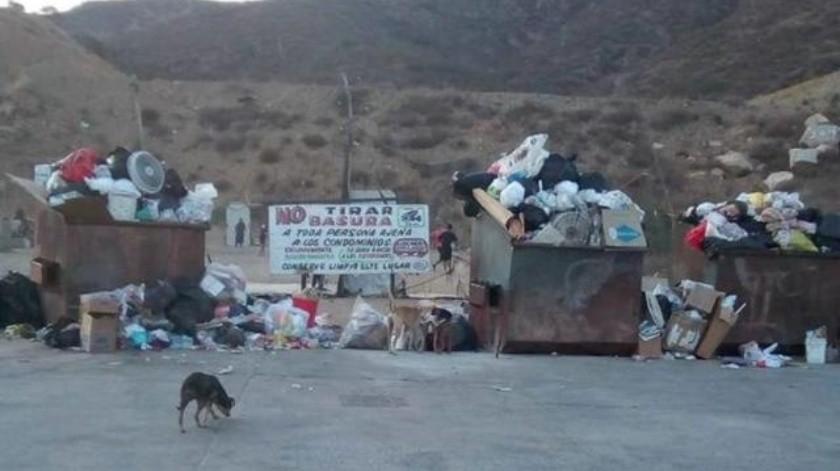 Llevarán basura a Palacio en protesta