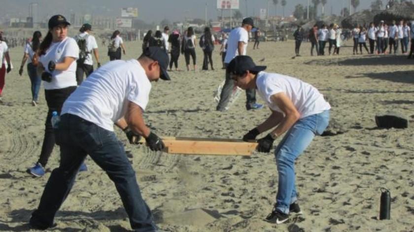 Retiran 28 toneladas de basura de playa