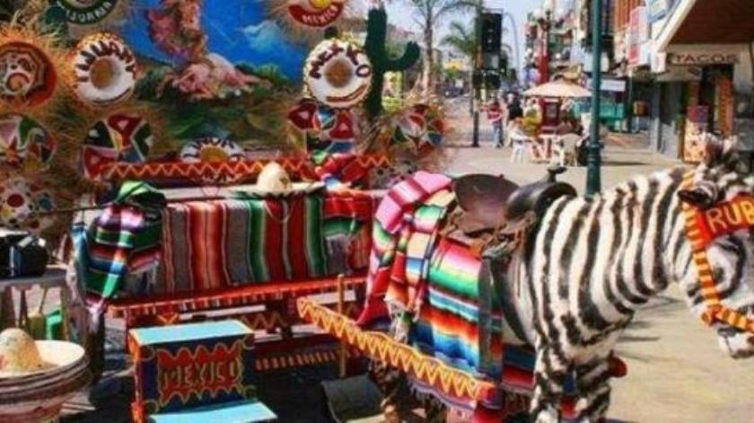 Comerciantes de 'La revu' afirman que el 'burrocebra' debe seguir