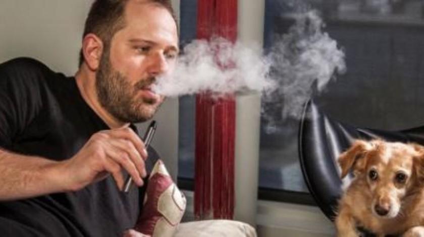 Cigarrillos electrónicos causan intoxicaciones en mascotas