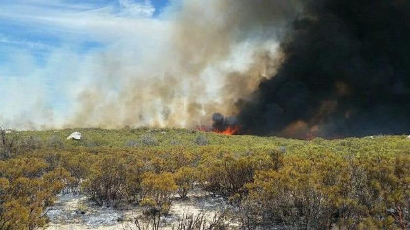Combaten incendio forestal cerca a Sierra de Juárez