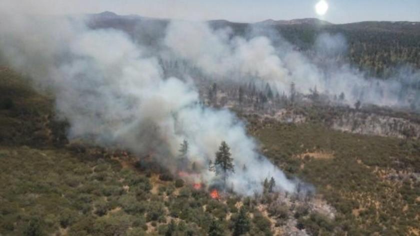 Reporta Dirección de Bomberos incendio en Sierra de Juárez
