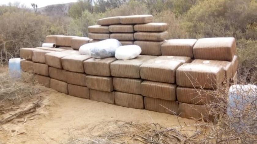 Asegura Ejército más de una tonelada de mariguana al Sur de Ensenada