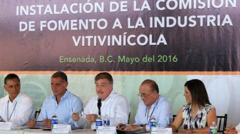 Avanza ley de fomento a industria vitivinícola