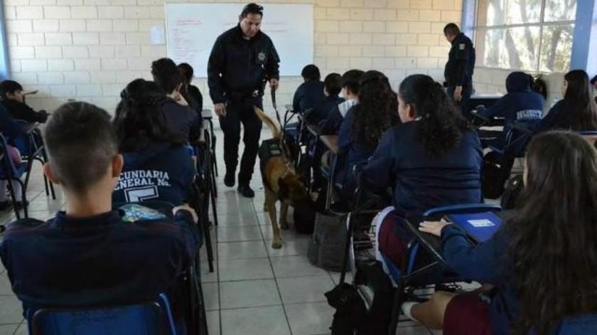 Suben casos de jóvenes con droga en escuelas