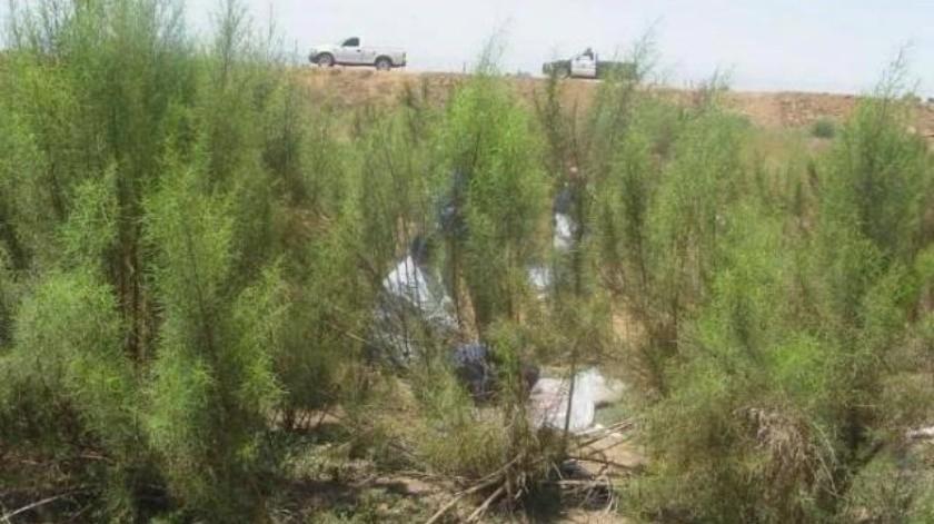 Localizan 6 osamentas humanas en El Roble