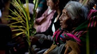 Bolivia lanza aplicación sobre lenguas nativas