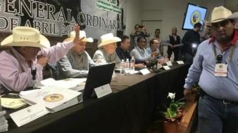 """""""Estas elecciones fueron completamente legítimas"""": Héctor Platt"""