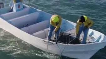 Activistas denuncian hostigamiento de pescadores furtivos