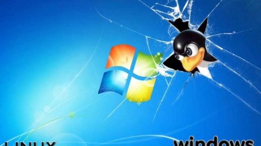Hosting Linux o Windows: ¿cuál es el mejor para ti?