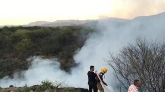 Se contabilizan 172 incendios forestales en Oaxaca en 2019: Coesfo