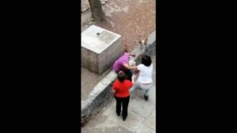 VIDEO: Adolescente patea y golpea a abuelita que paseaba a sus perros en Tlatelolco