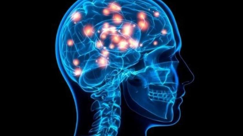 Cultiva nuevas neuronas para su cerebro siguiendo estos consejos