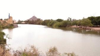 Desde las 06:00 horas no hay acceso a la laguna de La Sauceda, luego de que un joven falleciera cuando nadaba en este sitio.