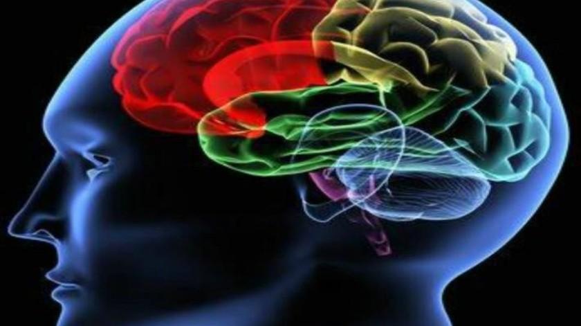 Mejor nivel de vida: mayor rendimiento cognitivo
