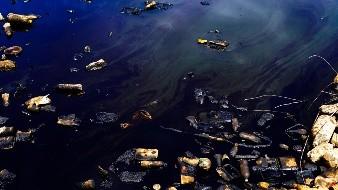 Hasta 9 años de cárcel para responsable de aceite en dren del Valle