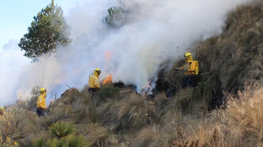 La Comisión Nacional Forestal (Conafor) informó que 96% de los incendios forestales que se registraron este fin de semana en la Ciudad de México han sido liquidados.(Conafor)
