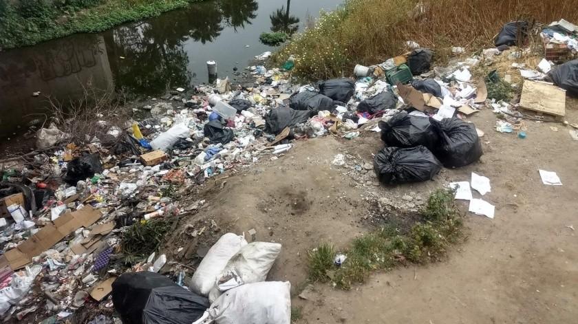 El Presidente del Consejo Ciudadano BC, dijo que todavía en gran parte de las colonias el camión de la basura tarda un promedio de un mes en pasar, por lo que es necesario que los candidatos a la Alcaldía se preocupen por este problema antes que cualquier otro.(Alejandro Zepeda)