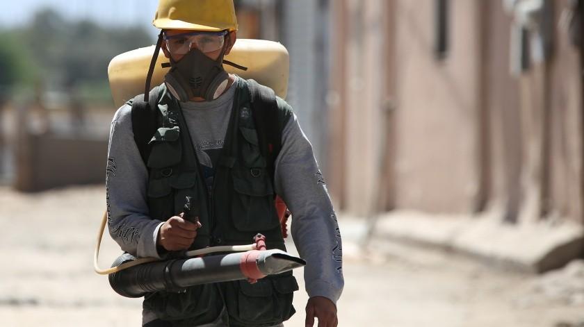 Aumenta 40% el mosco del dengue(Víctor Medina)