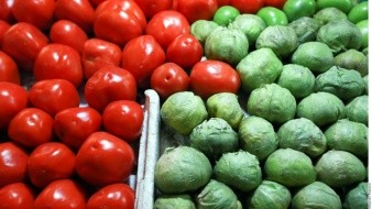 Van tomateros mexicanos contra arancel
