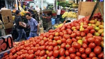 México plantea a EU reclasificar tomate