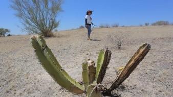 Hallan Guerreras Buscadoras osamenta en Hermosillo