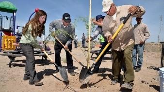 El Ayuntamiento de Hermosillo inició la plantación de árboles en el Eco Parque.