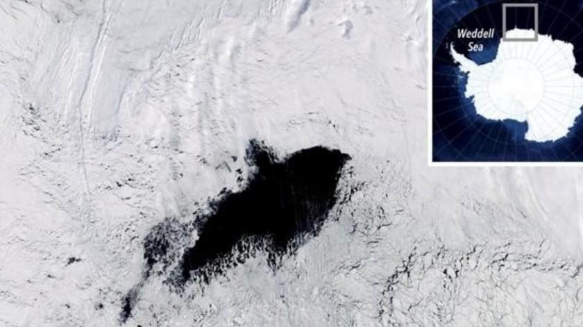 Las polinias fueron descubiertas en 2016 y 2017 por satélites.