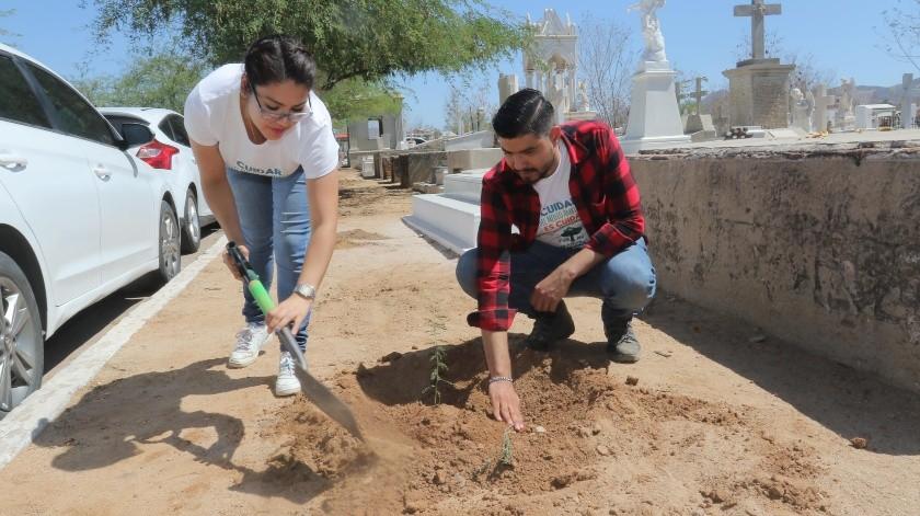 Apenas el sábado pasado organizaciones ecologistas reforestaron el Andador Garmendia del Panteón Yáñez. La autoridad municipal afirma que faltan alrededor de 70 mil árboles en la ciudad.(Anahí Velásquez)