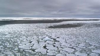 La cantidad de hielo flotante que circula alrededor de la Antártida se ha reducido de su máxima histórica a su mínima, para desconcierto de los científicos.