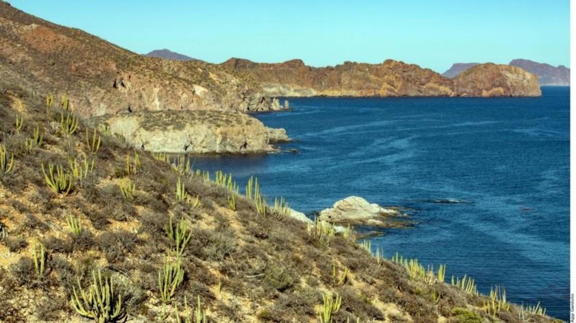 Las islas y áreas naturales protegidas del Mar de Cortés fueron inscritas en la Lista del Patrimonio Mundial en Peligro.(Agencia Reforma)