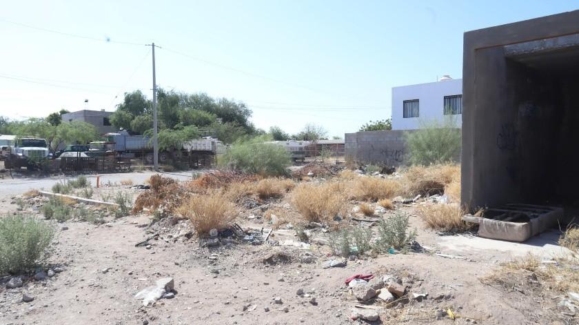 Es un peligro pasar por los lotes baldíos en Las Placitas, sección Los Álamos, pues es en donde asaltan, aseguran vecinos.(Teodoro Borbón)