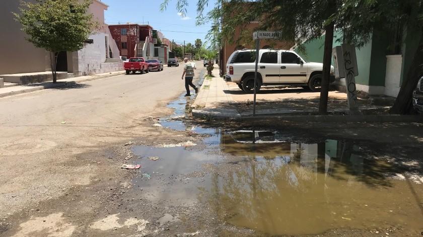 En las calles Venado Bura y Alondra desembocan las aguas negras que provienen de un domicilio particular.(Gamaliel González)