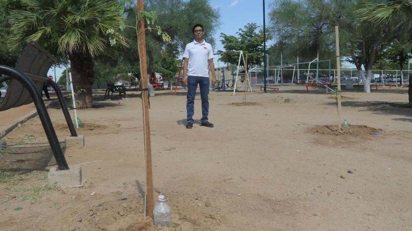 """Efraín Antonio Gálvez de la organización """"Valor Juvenil Mexicano"""" varios jóvenes colocaron alrededor de 25 árboles en el parque ubicado por la calle Luis Orci y Lázaro Mercado.(Anahí Velásquez)"""