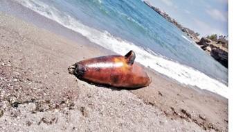 Tras derrame de ácido sulfúrico, mueren animales en playas de Guaymas