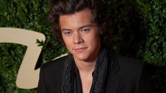 REINO UNIDO EFESTILO MODA - REINO UNIDO EFESTILO MODA:LND28. LONDRES (R.UNIDO), 02/12/2013.- El integrante de la banda brit�nica One Direction, Harry Styles, posa a su llegada hoy, lunes 2 de diciembre de 2013, a la entrega anual de los Premios Brit�nicos de la Moda en el Teatro Coliseo en Londres (R.Unido). Los Premios Brit�nicos de la Moda reconocen a la gente m�s influyente en la moda actualmente y celebra la reputaci�n y el desarrollo de la industria brit�nica de la moda. EFE/DANIEL DEME