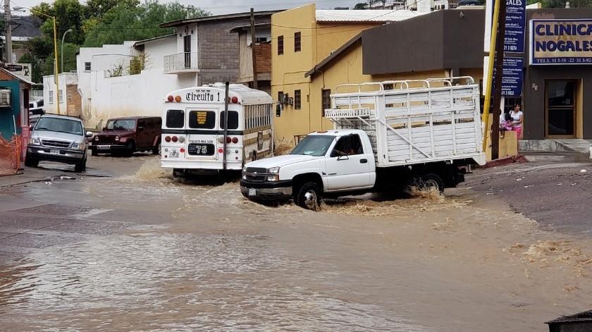 Detalló que el saldo de la precipitación del miércoles consistió en once árboles caídos tanto en cables de electricidad como domicilios, vehículos y en la vía pública.(Archivo)