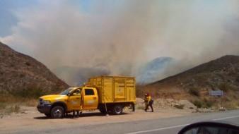 Personal de Conafor y bomberos voluntarios están en la zona