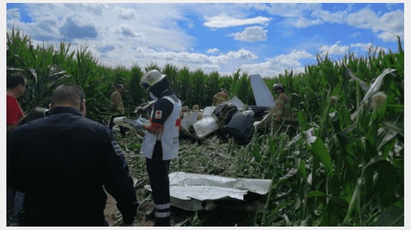 La Secretaría de Comunicaciones y Transportes informó que tanto la avioneta como el piloto Jorge Calderón tenían su documentación y permisos en regla.(Cortesía, vía El Universal)