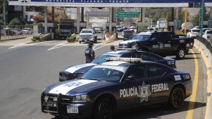 Autoridades federales y estatales realizaron el operativo durante la madrugada de ayer.