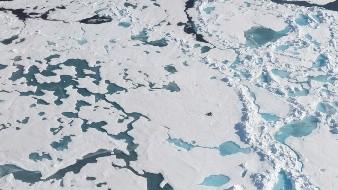 Suiza podría perder todos sus glaciares en este siglo, según estudio