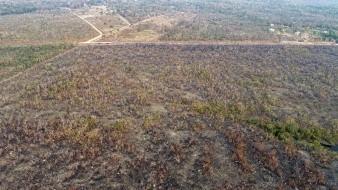 Perú descarta que incendios de Amazonia en Brasil y Bolivia alcancen su territorio