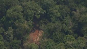 La Amazonía peruana arde en silencio cada año